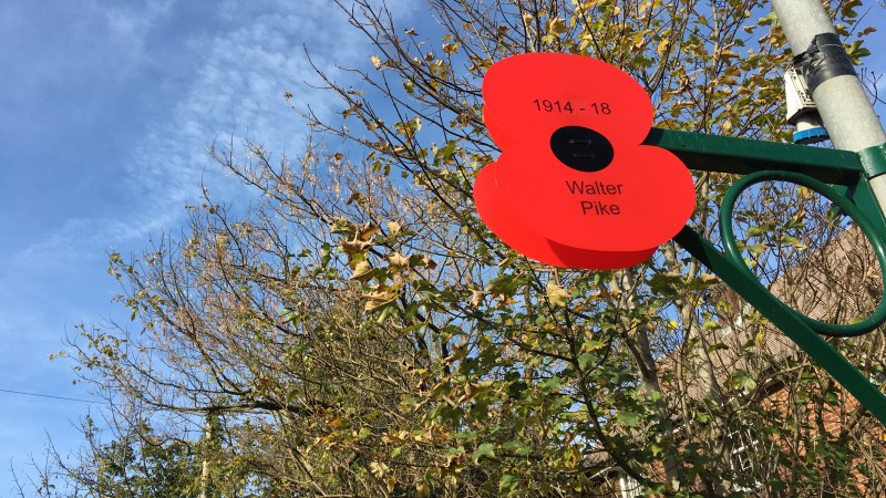 Remembrance appeal branches out with poppy 'onesies&#39