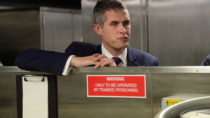 Defence Secretary Gavin Williamson's Pet Tarantula Evicted From MoD