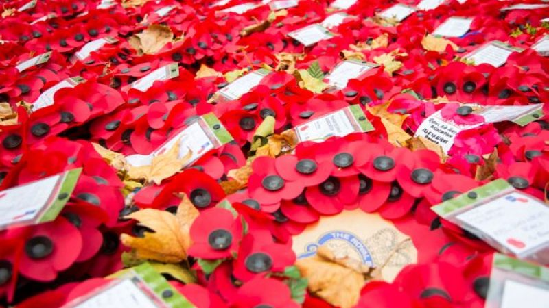 Poppies laid at the Cenotaph in 2015