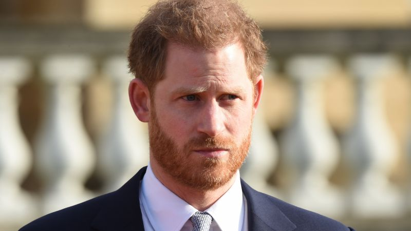 Prince Harry in Buckingham Palace gardens during Rugby World Cup draw