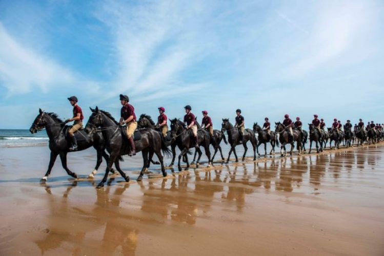 Household Cavalry on the beach in Norfolk training 050719 Credit MOD