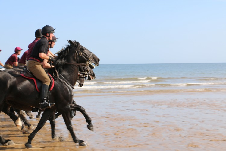 Household Cavalry Take Horses On Holiday
