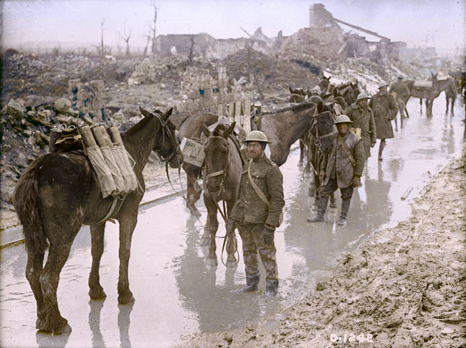 Pack horses transporting ammunition in 1917 (Picture: The Vimy Foundation).