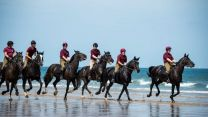 Household Cavalry on the beach in Norfolk - behind shot 050719 Credit MOD