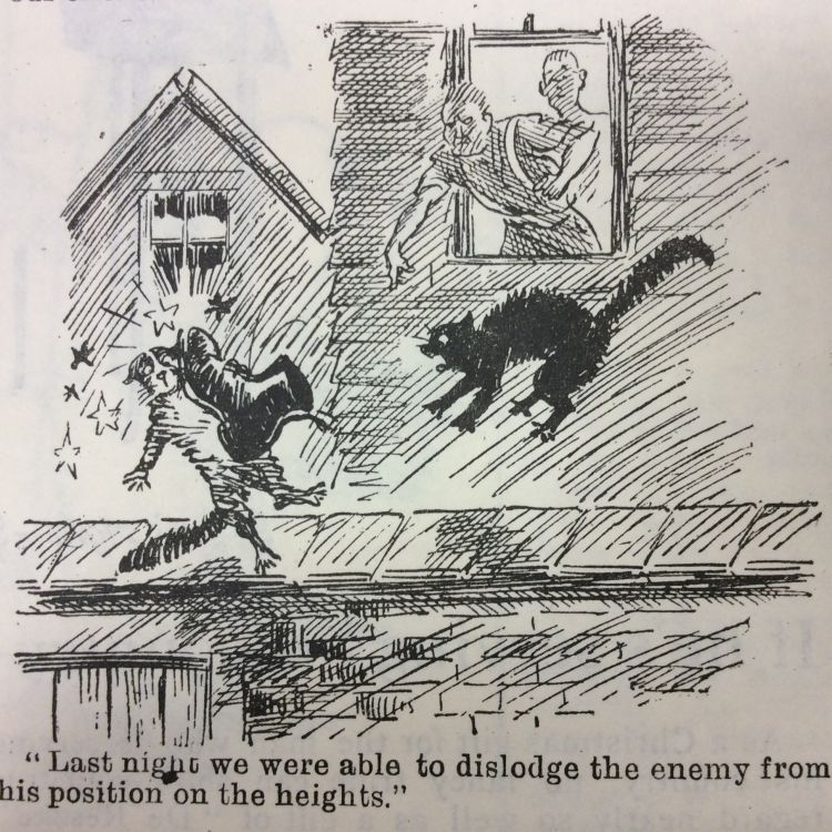 Blighty magazine cartoon cat