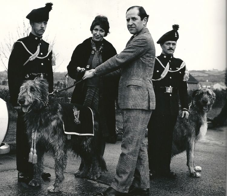 Brian Boru I (Irish Wolfhound) - Royal Irish regimental mascot retirement