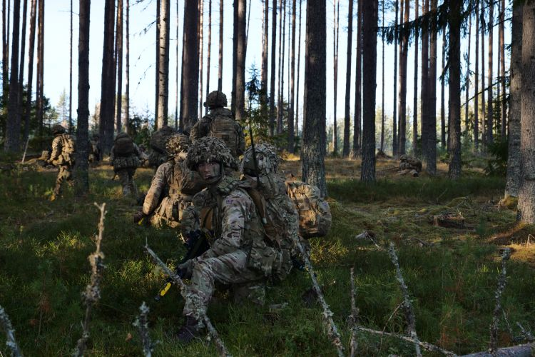 British soldiers in woodland area during Exercise Trident Juncture.