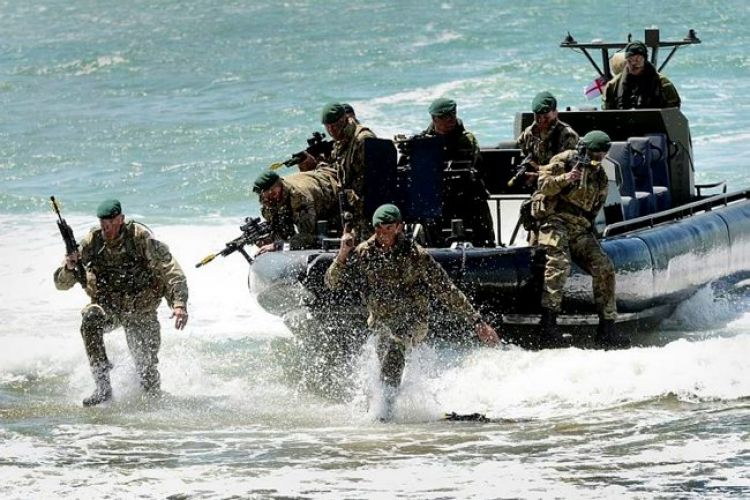 Amphibious Capability Put To The Test Ahead Of Trident Juncture