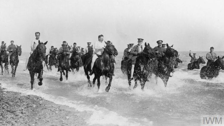 C Battery 107th Brigade, Royal Field Artillery Horses Sea Beach June 1915 © IWM (Q 53766)