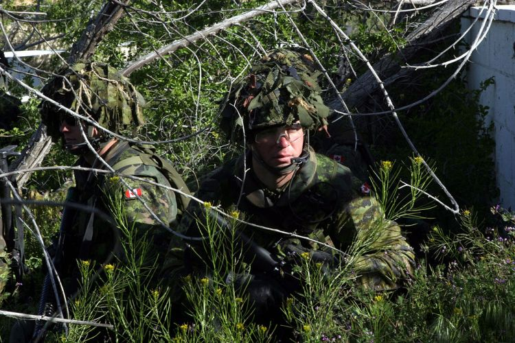 CADPAT Camouflage currently used by Canadian forces.