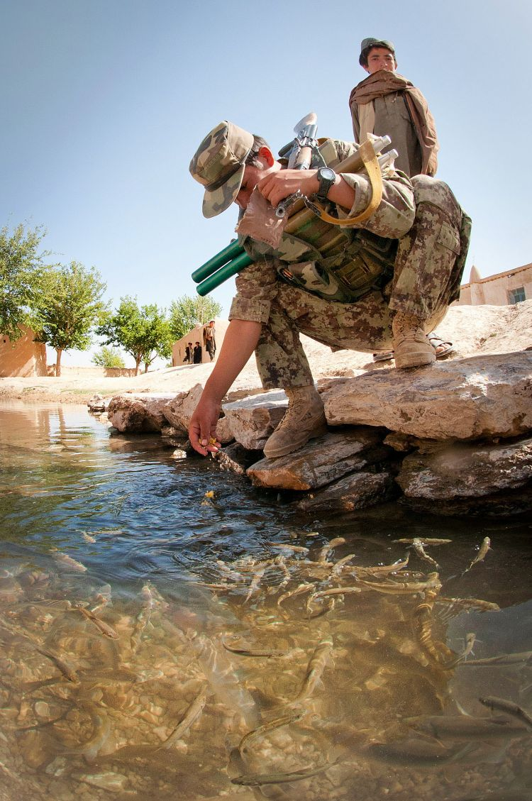 Afghan Feeding Fish