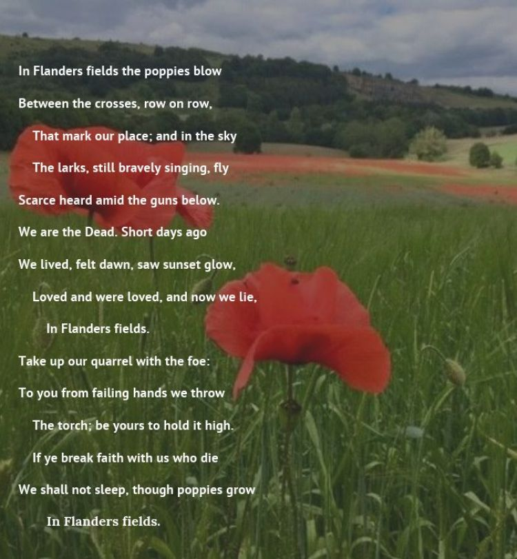 In Flanders Field poem graphic. BFBS copyright