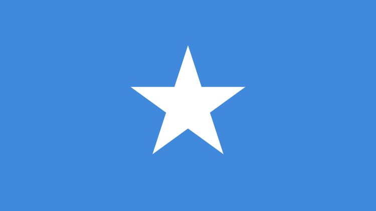 The Somali flag
