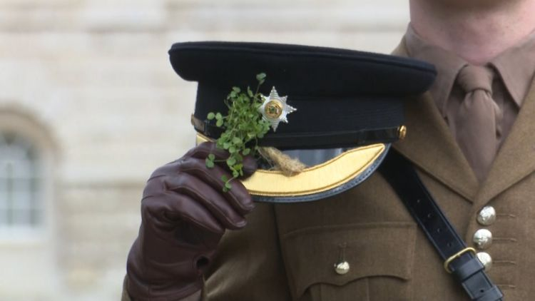 Irish Guards headdress complete with traditional shamrock.