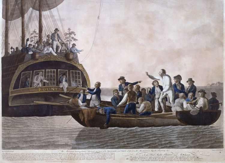 Mutiny on the Bounty contemporary painting