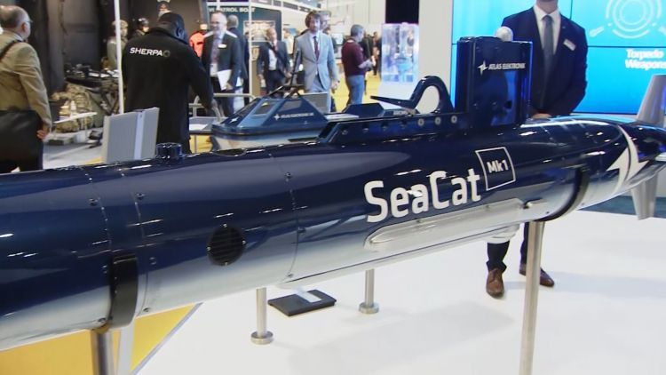 Seacat missile at DSEI 2019