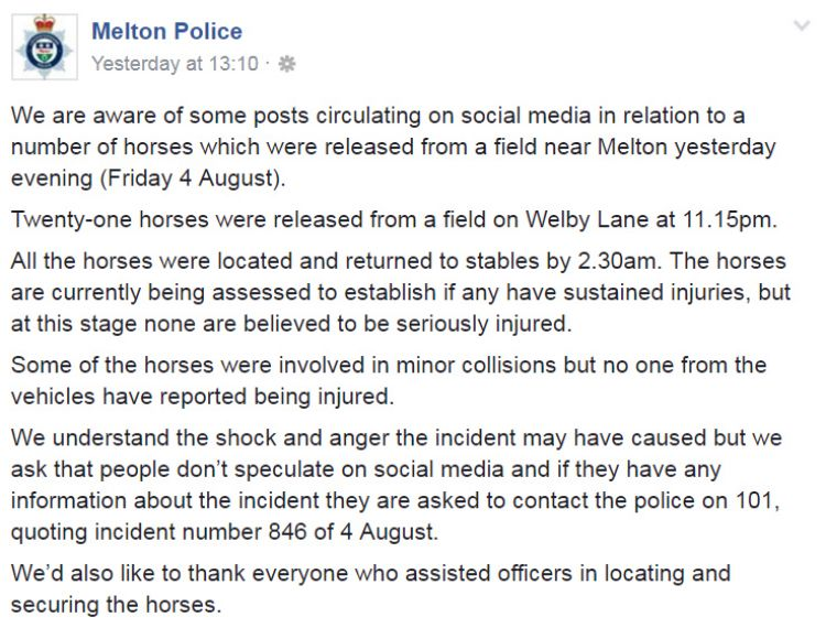 Melton Police injured horses statement