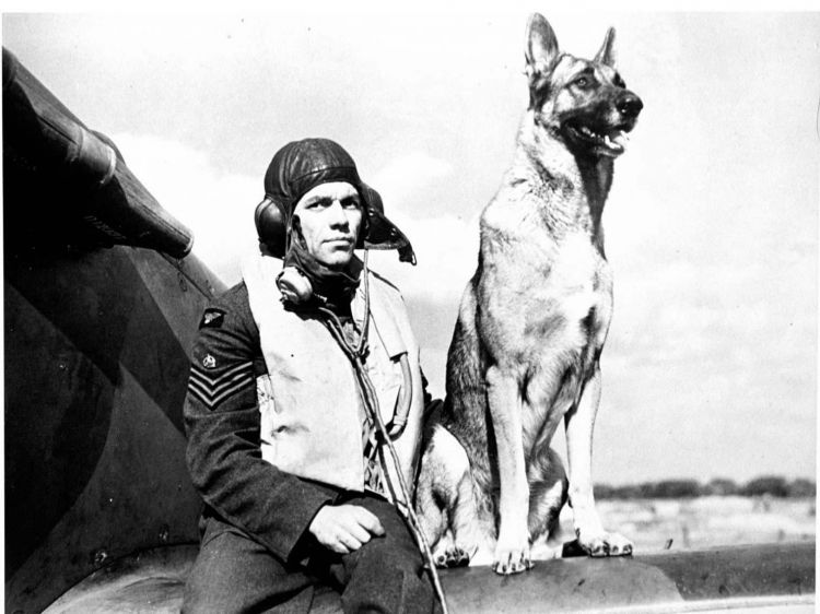 Wing Commander George Unwin during the Battle of Britain in 1940 with his dog Flash posing by a Spitfire 010940 CREDIT PA