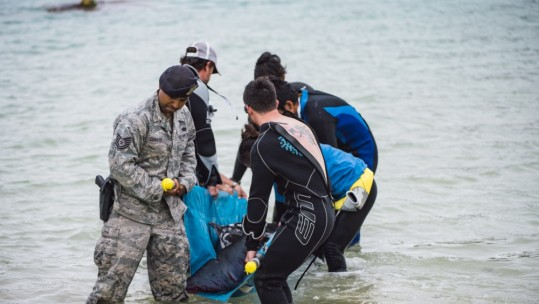 Kadena Airman Save Dwarf Sperm Whale
