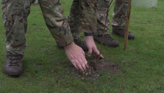 Royal Signals member plants tree to mark Signals centennial year