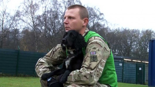 Military Dogs & Their Handlers Show Off Unique Bond