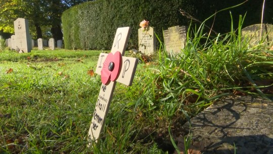 RAF Halton cadets have placed remembrance crosses on over 200 war graves in Buckinghamshire.