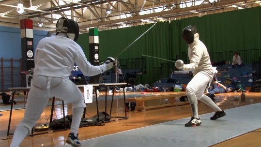 Forces fencing