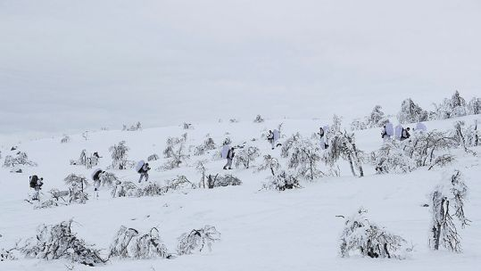 Norwegian Army Winter Exercise