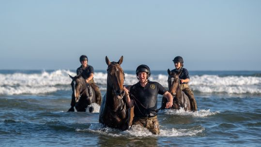 Soldiers and horses from The King's Troop Royal Horse Artillery exercise in the sea at Holkham