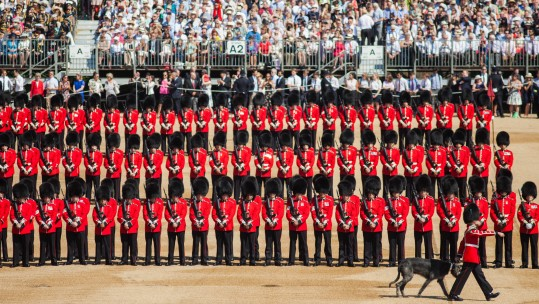 The Irish Guards get ready for the Queen's 2017 Birthday Parade - Anonymous 170617 CREDIT MOD
