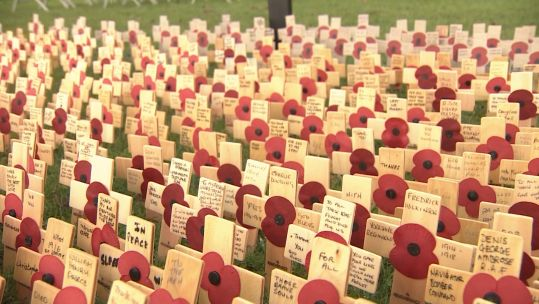 Thoughts from visitors at NMA field of remembrance 041119 CREDIT BFBS.jpg