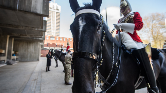 Household Cavalry's best turned out soldier?